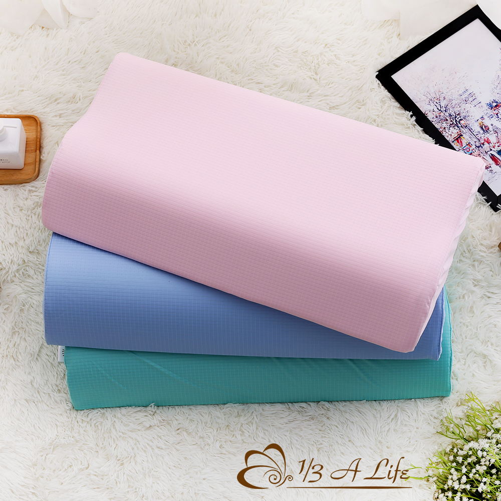 1/3 A LIFE 防蹣抗菌-舒眠56cm竹炭記憶枕(2入)