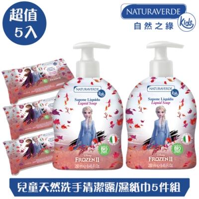 【自然之綠】冰雪奇緣兒童天然洗手清潔露/濕紙巾5件組(250mlx2+15抽x3)