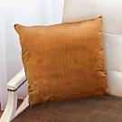 凱蕾絲帝 台灣製造-特級可水洗棉-實木椅沙發椅專用49cm絨布方形抱枕/靠枕-咖啡(二入)