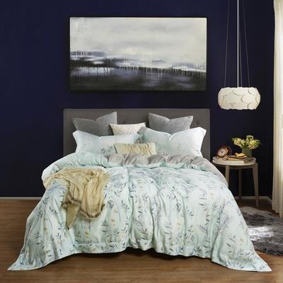 (買一送一) Ania Casa 50%天絲枕套床包組 雙大均一價 (贈品請於備註提供尺寸花色)