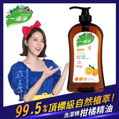 一滴淨蘆薈多酚食品用洗潔精 柑橘精油洗碗精1000g