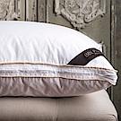 BBL Premium JIS95/5機能調節羽絨枕(一對)