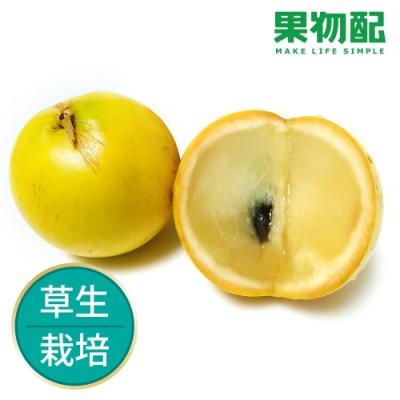 【果物配】黃金果.友善農法(1.8公斤,6顆)