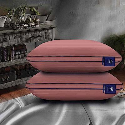Hilton 希爾頓 阿拉丁100%天絲60支紗沉睡助眠枕 兩色任選 1入