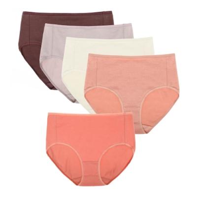 sloggi-Everyday有機過生活系列高腰內褲五件包 M-EEL 霧色系列