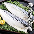 【海鮮王】挪威薄鹽鯖魚 *10片組(140g-160g±10%/片)