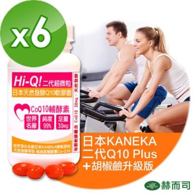 赫而司 日本Hi-Q Plus超微粒天然發酵Q10軟膠囊(100顆/罐*6罐組)