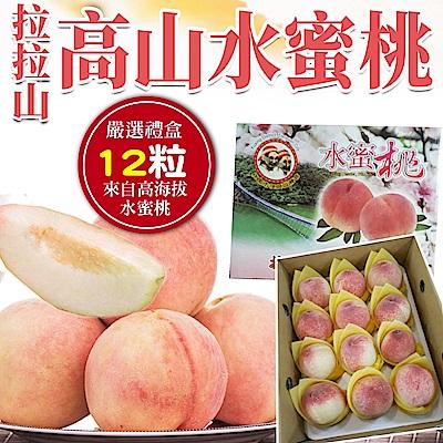 【天天果園】拉拉山水蜜桃(每盒2.8斤) x12顆