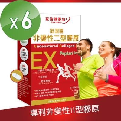 【家倍健】挺固關日本非變性二型膠原蛋白(30錠/盒x6盒)