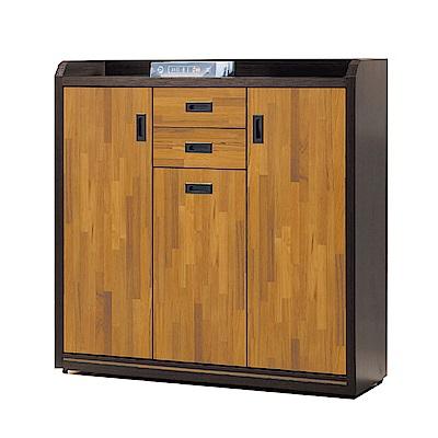 綠活居 瑞米現代4尺三門二抽鞋櫃/玄關櫃-119x40x122cm免組