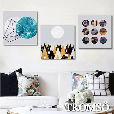 TROMSO 時尚無框畫-北歐國度