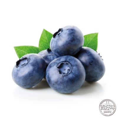 【吉好味】智利空運藍莓原箱出貨-G002 (125g/盒*12小盒)