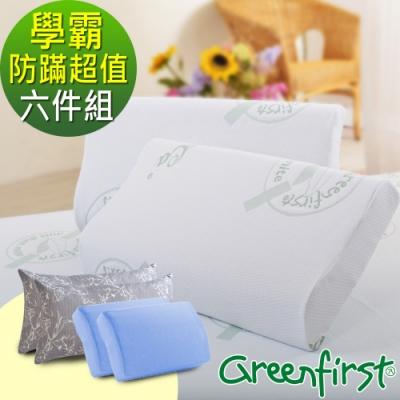 (學霸組)2入-法國防蹣防蚊特大透氣記憶枕