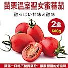 【天天果園】苗栗溫室聖女蜜蕃茄(每盒約600g) x2盒