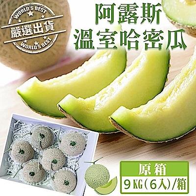 【天天果園】日本品種阿露斯綠肉哈蜜瓜9kg/箱(約6顆)
