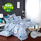 Washcan瓦士肯 原野森林雙人特大100%精梳棉六件式兩用被床罩組