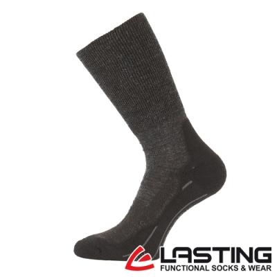 【LASTING捷克】男款美麗諾羊毛抗菌除臭吸濕排汗中筒襪/運動襪LT-WHK黑