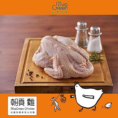 【山林水草】朝貢雞 全雞1隻(2kg/包) 小家庭經濟含運組