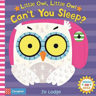 Little Owl,Little Owl Can t You Sleep? 硬頁推拉書