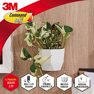 3M 無痕Lifestyle 白色小型置物盒 (超值6入組) 17718