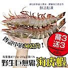 (買3送3)【海陸管家】巨無霸比臉大海虎蝦(每隻150g-200g) 共6隻