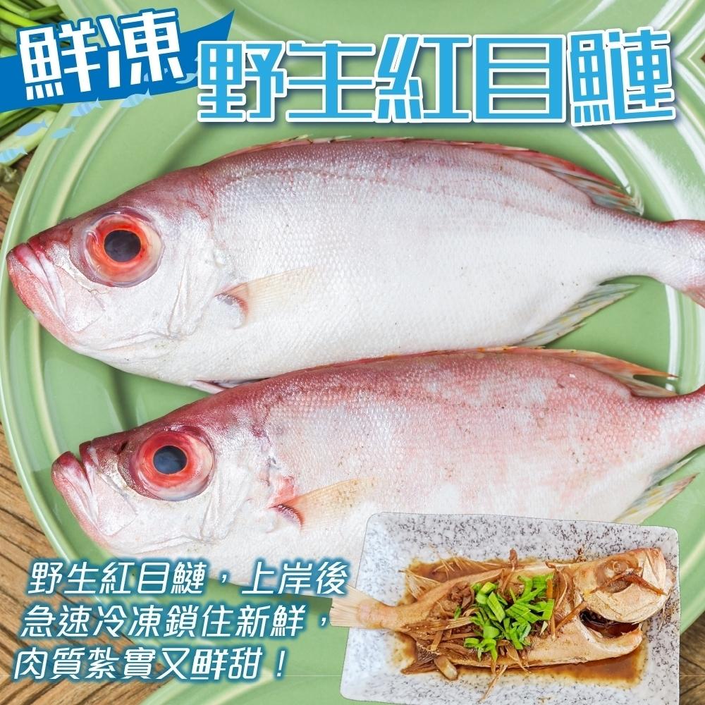 (滿699免運)【海陸管家】嚴選野生紅目鰱1隻(每隻約150g)