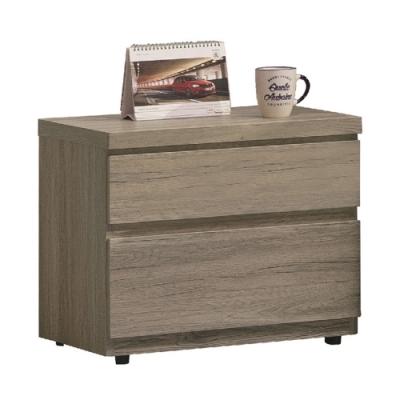 【AT HOME】日式簡約淺橡木紋二抽床頭櫃/床邊櫃/收納櫃(雀巢)