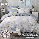 Tonia Nicole東妮寢飾 荷映水岸100%精梳棉兩用被床包組(特大)