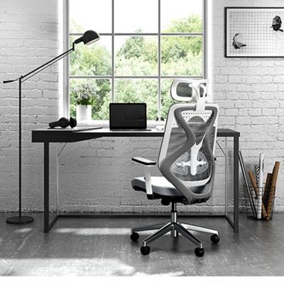 【 Hyman PluS+ 】工學智慧雙腰托雙曲線設計人體工學電腦椅/辦公椅