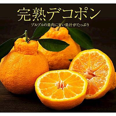 【天天果園】日本DEKOPON葫蘆柑(每顆約500g) x2顆原裝盒