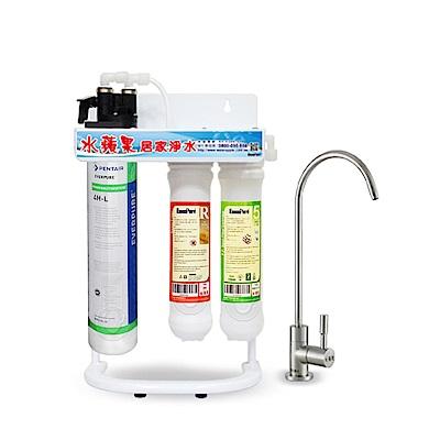 水蘋果公司貨 EVERPURE QL3-4HL 便捷式三道淨水器