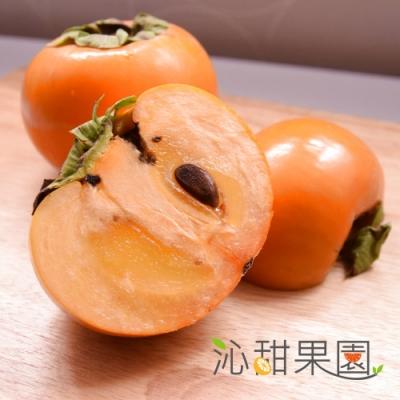 沁甜果園SSN‧高山甜柿6A禮盒(6粒裝)
