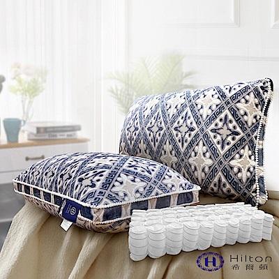 Hilton 希爾頓 皇宮宮廷系列 銀離子手工雕花天絲獨立筒釋壓枕 1入