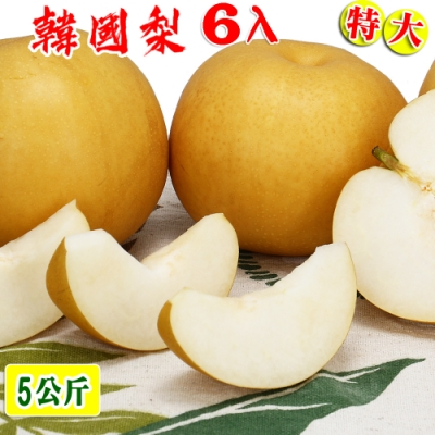 愛蜜果 韓國新高梨大顆美品6入原裝箱(約5公斤/箱)