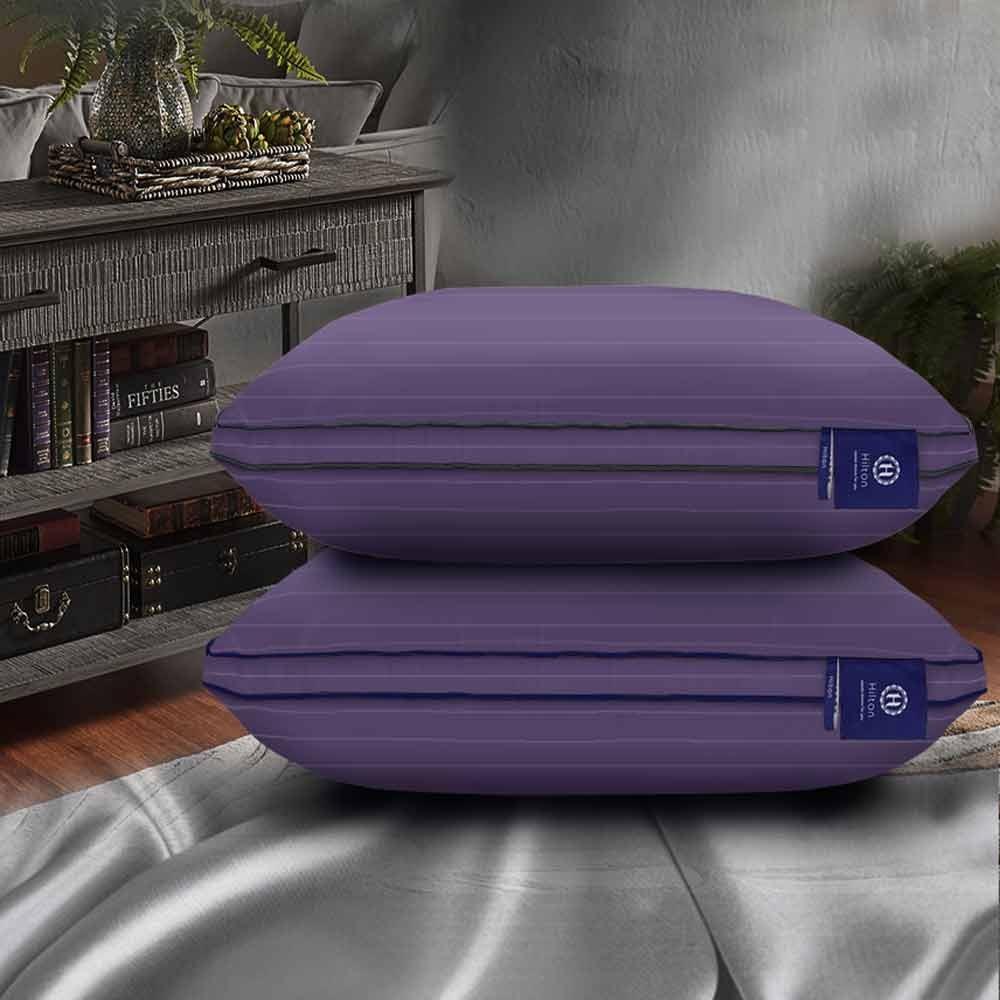 (限時下殺)Hilton 希爾頓 阿拉丁100%天絲60支紗沉睡助眠枕 2入(兩色) 再贈枕套