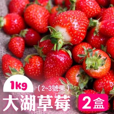家購網嚴選 鮮豔欲滴大湖香水草莓1公斤x2盒(2~3號果)