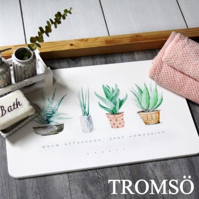 TROMSO 珪藻土厚實吸水地墊-手繪小盆栽