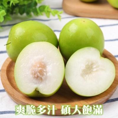 【天天果園】台灣大顆牛奶蜜棗禮盒 12顆(每顆約130g)