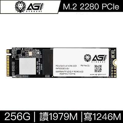 AGI亞奇雷 AI198 256GB M.2 2280 PCIe TLC固態硬碟(讀:1979M/寫:1246M)