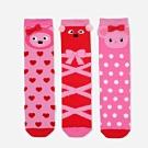 WHY AND 1/2 三件組長筒襪