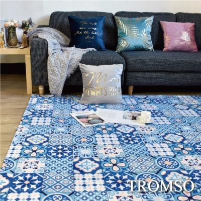 TROMSO珊瑚絨短毛地毯-特大G格調時尚230x160cm