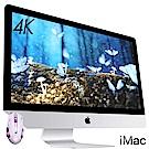 Apple iMAC 21.5 4K/8G/480SSD/Mac OS(MNDYTA/A)