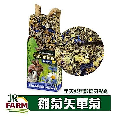 德國JR FARM 草本種籽棒-雛菊矢車菊/寵物鼠兔全天然無穀磨牙點心140g-08157