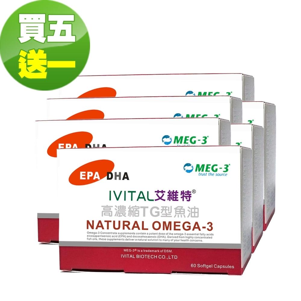 IVITAL艾維特 MEG-3原廠高濃縮TG型魚油軟膠囊(60粒)「買五送一盒超值組」