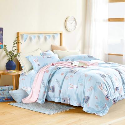 (送純棉口罩套x2) AniaCasa 親膚天絲被套床包組 雙/大均價