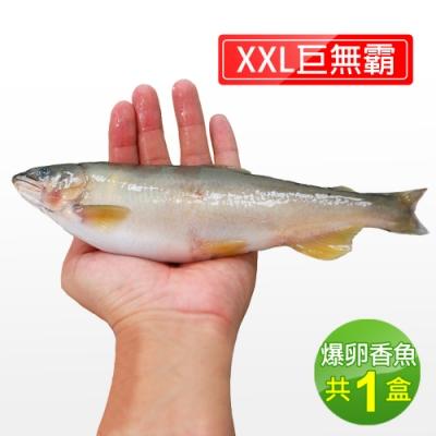 築地一番鮮-宜蘭特選巨無霸XXL爆卵母香魚1盒(5尾/920g/盒)免運組