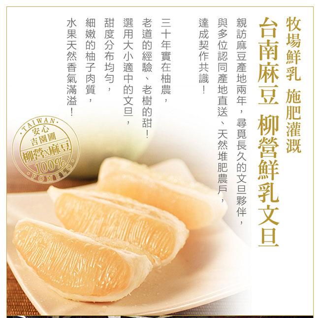 【台南麻豆】牧場鮮乳文旦 5斤3箱(5斤/5-6入/箱)