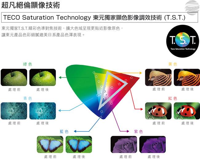 泰昀嚴選 TECO東元32吋FHD IPS 低藍光液晶電視 TL32A1TRE 線上刷卡免手續 全省宅配到府 B