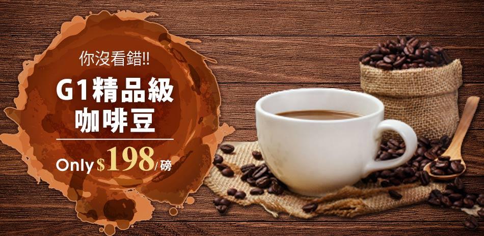 精品級金杯咖啡豆 198/磅up!