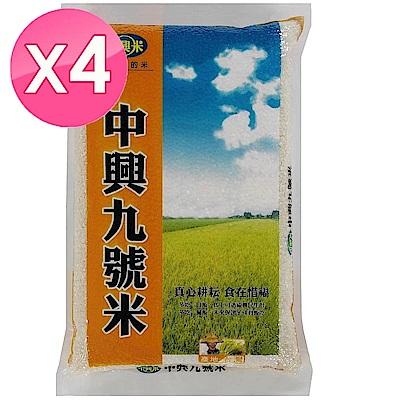中興米 中興九號米(3kg) X4包